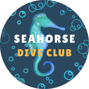 By Seahorse Divers